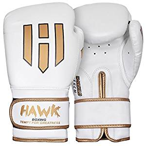 Hawk Boxing Gloves Training Bag Gloves Mitts UFC MMA Muay thai Sparring Gloves