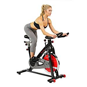 Sunny Health & Fitness Magnetic Folding Recumbent Bike
