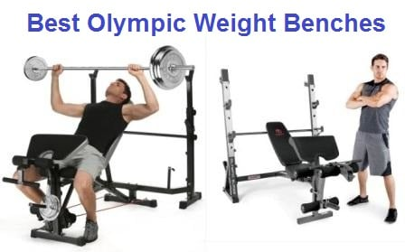 Fine Top 15 Best Olympic Weight Benches In 2019 Complete Guide Unemploymentrelief Wooden Chair Designs For Living Room Unemploymentrelieforg